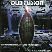 revolutionary dub warriors meet the mad professor fusion